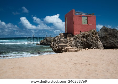 Beautiful tropical beach of Barbados, Caribbean. - stock photo