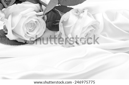 Beautiful white roses in black and white on white silk as wedding background