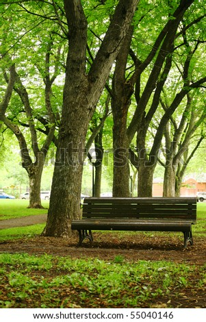 bench in a quiet park - stock photo