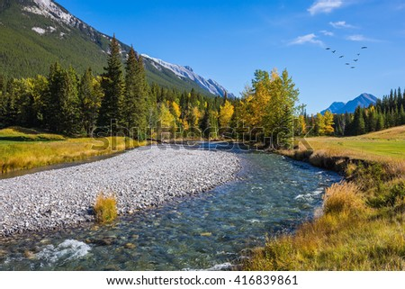 Beneaped autumn stream with a pebbly bottom. Magnificent  valley in Banff National Park - stock photo
