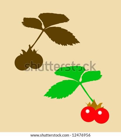 berry bramble - stock photo