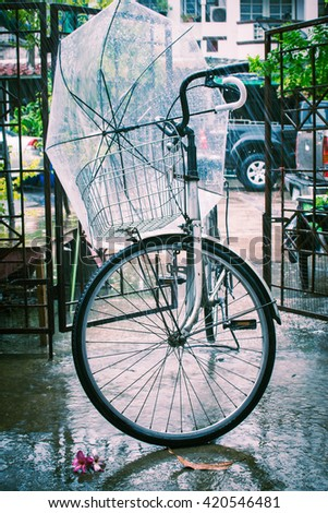 Bicycle Rain (Vintage)
