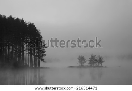black and white  abstract misty lake in autumn sunrise - stock photo