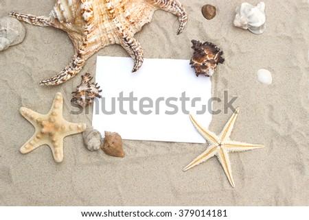 blank paper on beach sand summer starfish and shells - stock photo