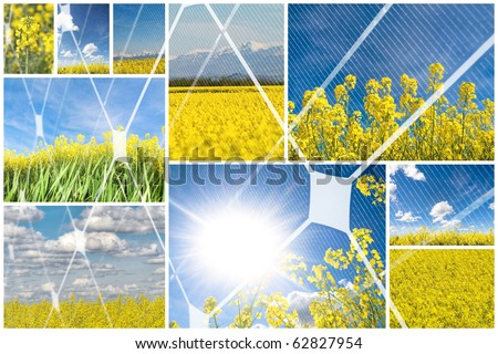 Blooming rapeseed with photovoltaic panel - stock photo