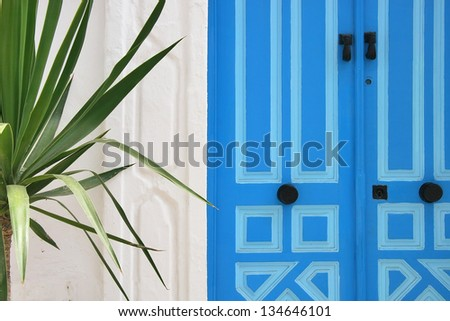 Blue door in Tunisia and palm tree
