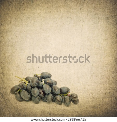 blue grapes isolated on retro background