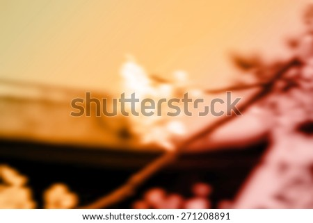 (BLUR style Abstract background). Spring time at a temple in Tokyo. - stock photo
