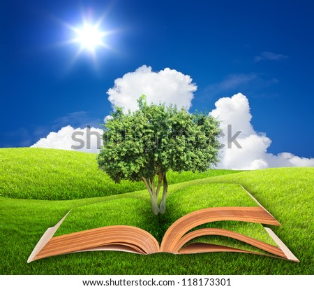 Book with tree on  green grass and blue sky - stock photo