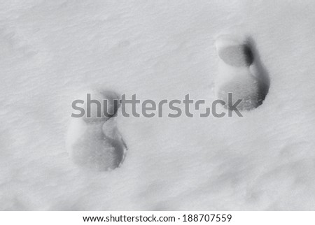 2 boot prints in fresh snow on the ground.