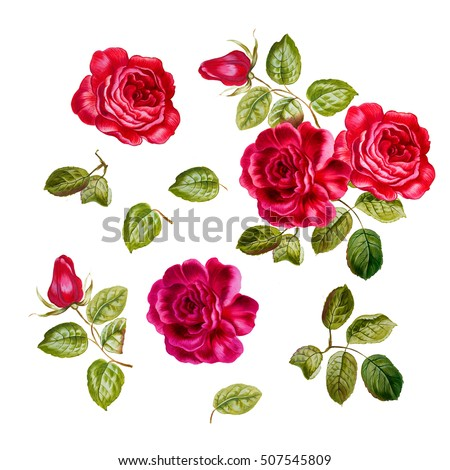 Rose Drawing Stock Images, Royalty-Free Images & Vectors ...