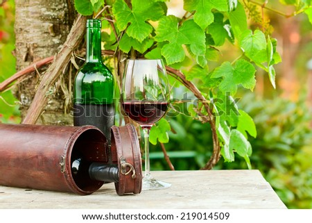 bottle and glass with red wine in vineyard.