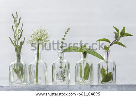 Bottle of essential oil with herbs curry, onion flower, mint ,thyme and basil  set up on white background