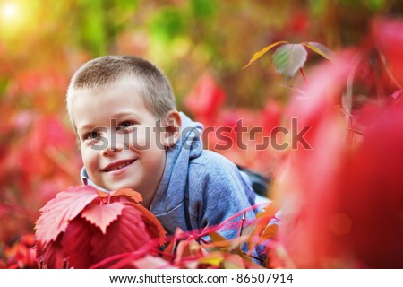 boy in the rad leaves - stock photo