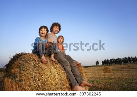 3 boys in a haystack in the field in autumn - stock photo