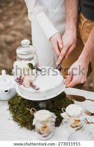 bride and groom cutting their wedding cake. beautiful wedding cake. wedding couple eating. wedding reception. wedding traditions. hands of bride and groom. unrecognizable people - stock photo