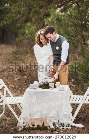 bride and groom cutting their wedding cake. beautiful wedding cake. wedding couple eating. wedding reception. wedding party outside in spring park - stock photo