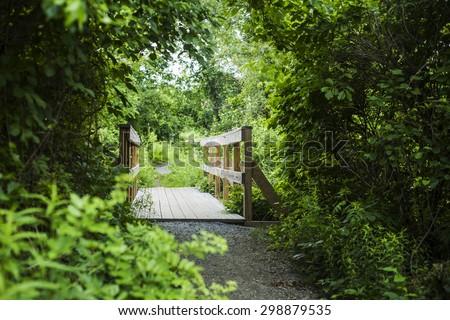 bridge over small river, Horn pond, America - stock photo