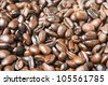 Brown Coffee Grains Close-Up - stock photo