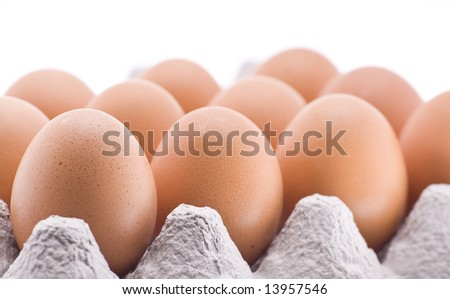 brown eggs in cardboard container - stock photo