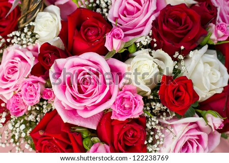 bunch of red and pink roses