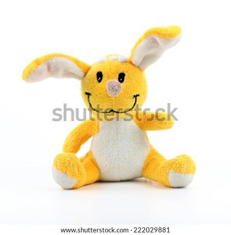 bunny isolated on white background   - stock photo