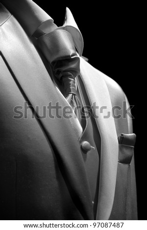 Businessman in   elegant suit, business meeting - stock photo
