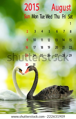2015 Calendar. August. Image of two swans on the water - stock photo