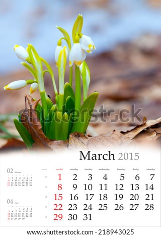 2015 Calendar. March. First flowers in the spring forest. - stock photo