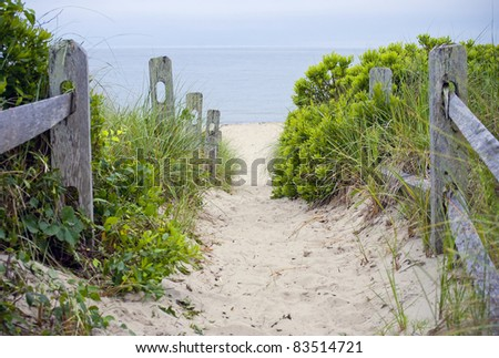 """Cape Cod Beach Pathway""  A beach pathway leading to the sea on Cape Cod in Massachusetts. - stock photo"