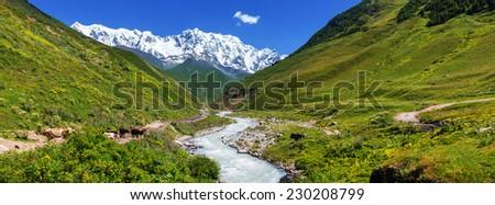 Caucasus mountains - stock photo