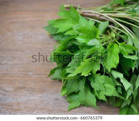Celery greens on a wooden background.