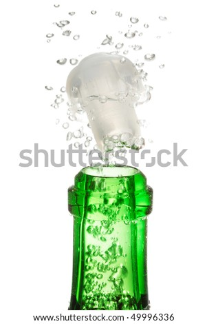 Champagne bottle - stock photo