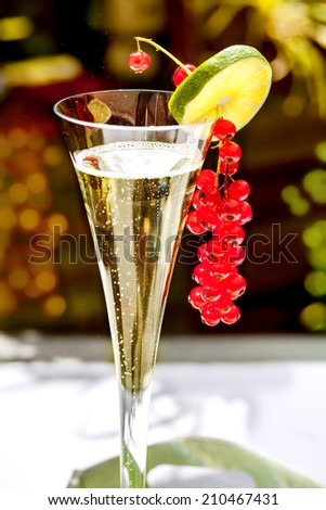 Champagne glass with champagne and red currant decoration - stock photo