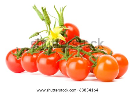 Cherry tomatoes on white background - stock photo