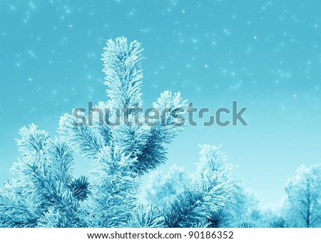 Christmas fantasy with  fir tree and snow in cold day - stock photo