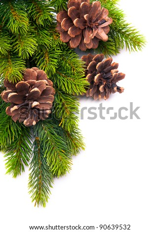 christmas frame with fir tree branch on white background - stock photo