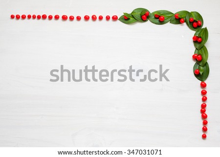 Christmas garland with red winter berries on snow background  - stock photo