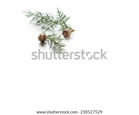 """Christmas greeting background"" - stock photo"