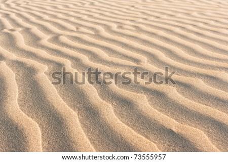 ,close up view beach sand,texture, - stock photo