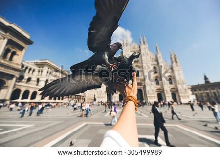 closeup dove with open wings sitting and eating with the hand of the girl against the backdrop of Duomo in Milan - stock photo