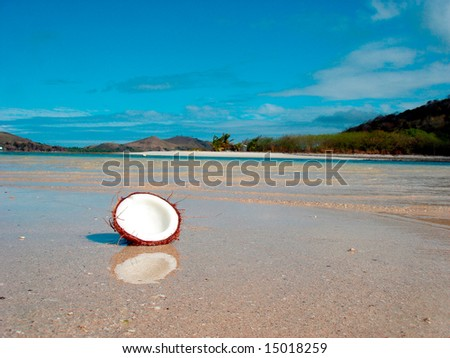 Coconut  on the beach - stock photo