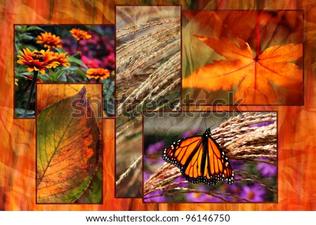 Colorful autumn collage created from several closeup nature images blended onto a background texture image of dried leaves for artistic painterly effect. - stock photo