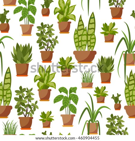 Collection Vector Flat Home Plant Pot Stock Vector