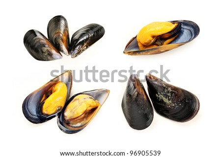 Cooked mussels on white background.