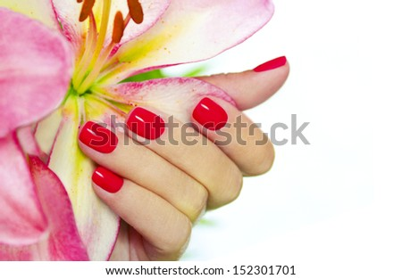 Coral nails on young female hands with pink Lily on a white background. - stock photo