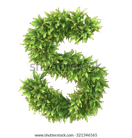 "3d ""Ananas"" decorative nature letter S"