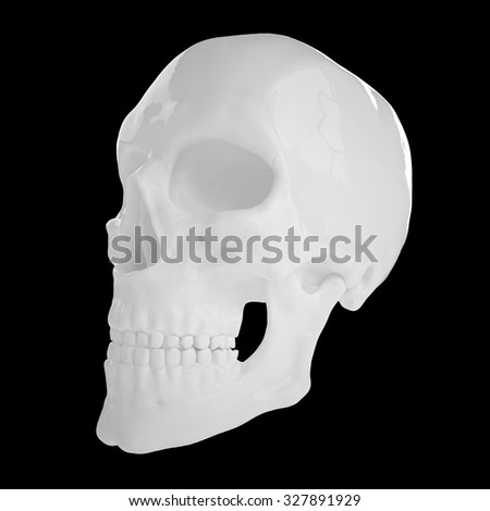 3D anatomic gypsum human scull with empty orbit isolated black