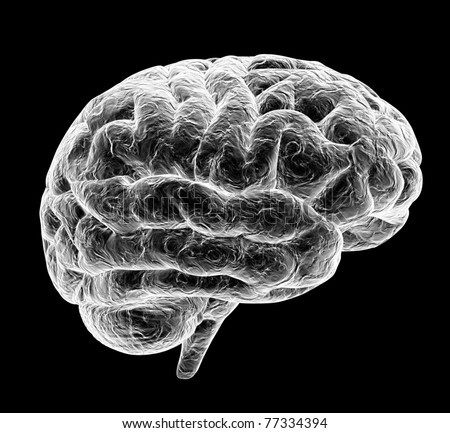 3d brain isolated on black background - stock photo