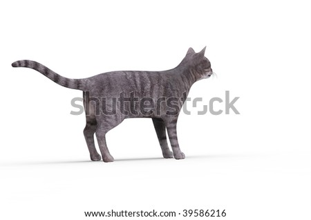 3d cat isolated on a white background - stock photo